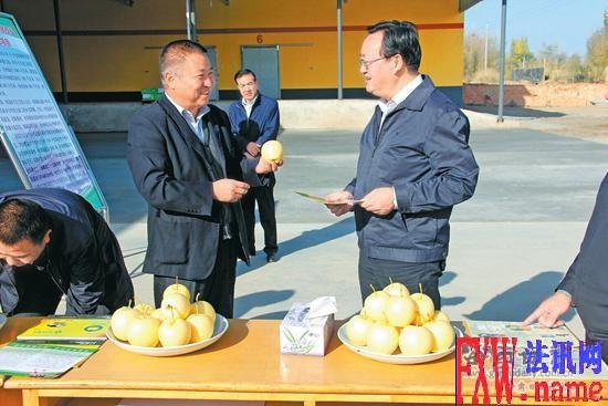 火荣贵视察武威市栽植的皇冠梨